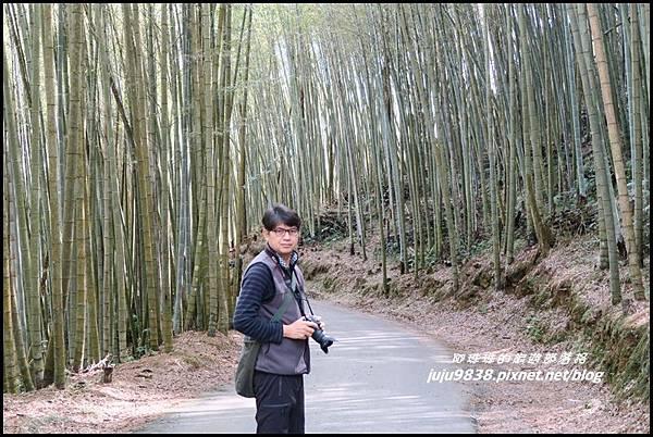 瑞里綠色隧道10.JPG