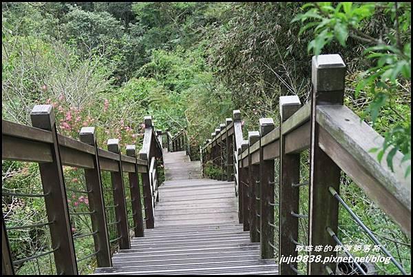 瑞里綠色隧道25.JPG