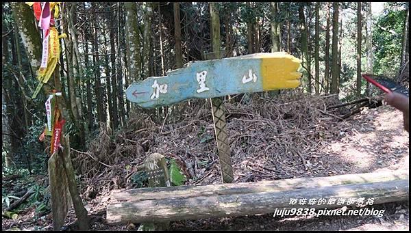 加里山11.JPG
