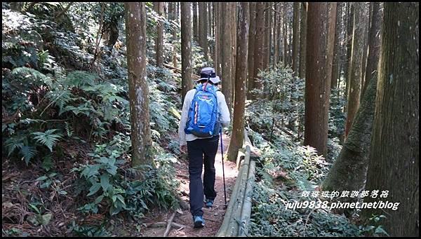 加里山12.JPG