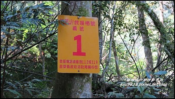 加里山17.JPG