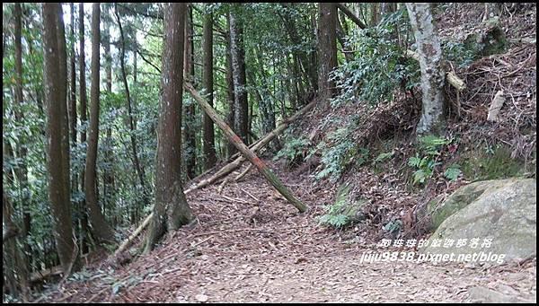 加里山22.JPG
