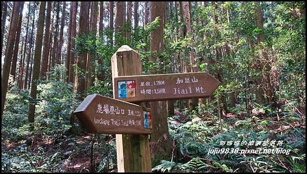 加里山36.JPG