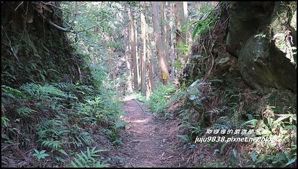 加里山41.JPG