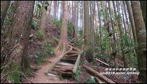 加里山50.JPG