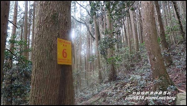 加里山53.JPG