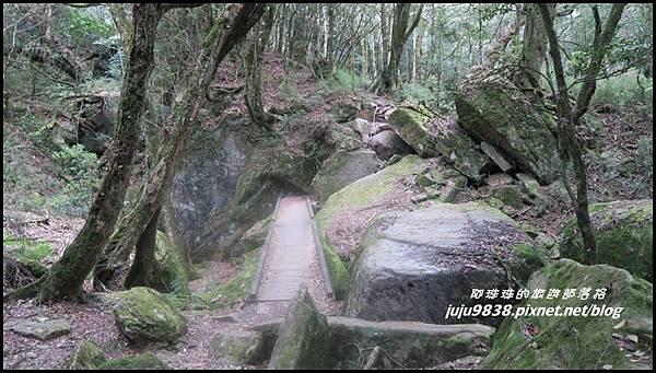 加里山63.JPG