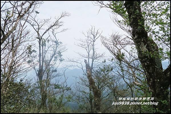 加里山86.JPG