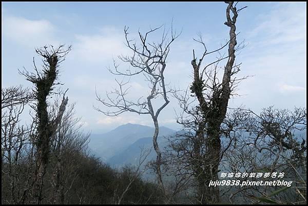 加里山92.JPG