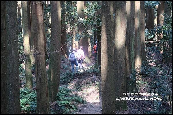 加里山108.JPG