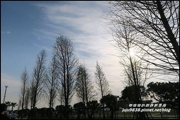 桃園農博25.JPG
