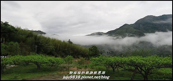 瑞里漫步雲端36.JPG