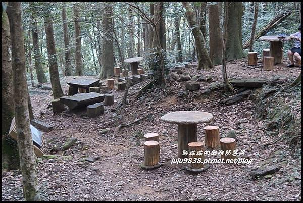 東眼山69.JPG