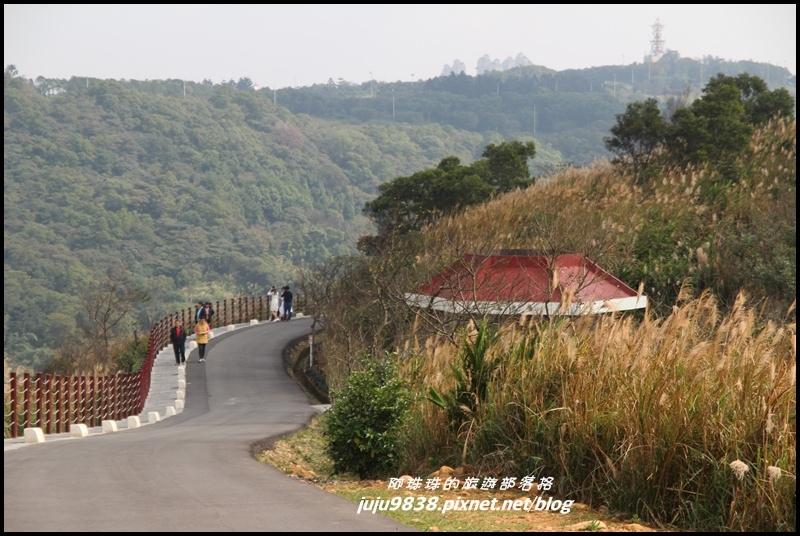 秀才登山步道5.JPG