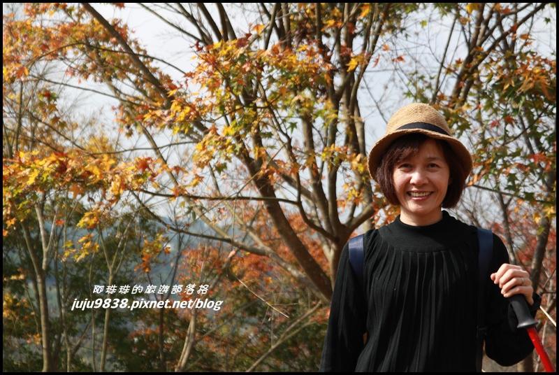 秀才登山步道23.JPG