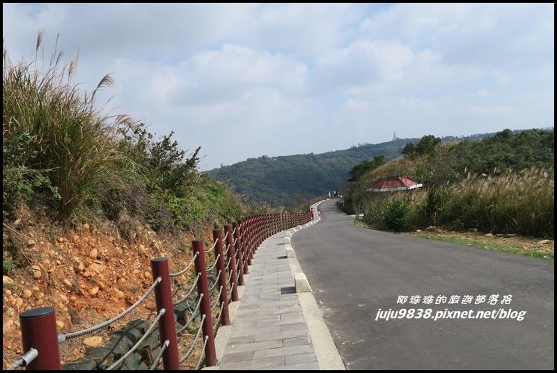 秀才登山步道36.JPG
