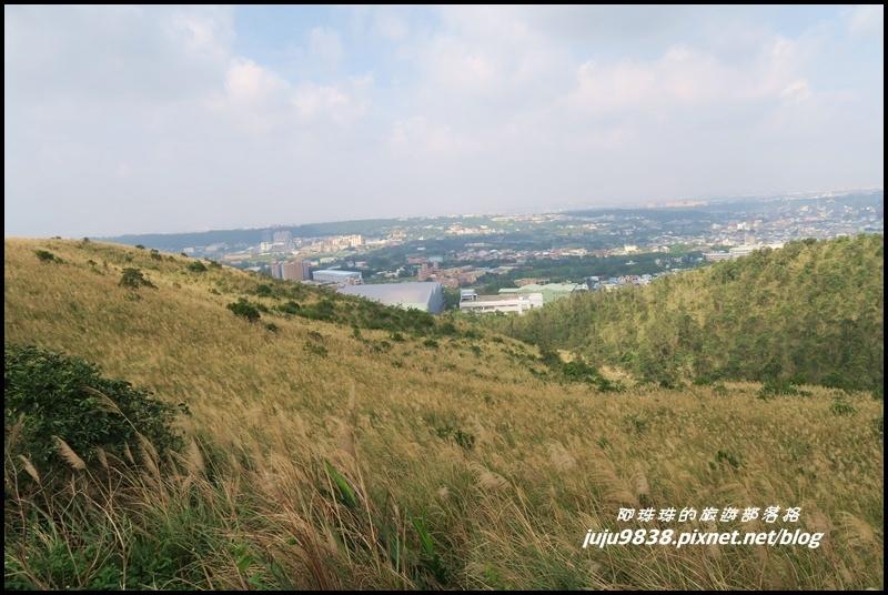 秀才登山步道39.JPG