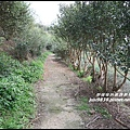 秀才登山步道44.JPG