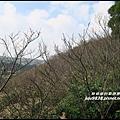 秀才登山步道52.JPG