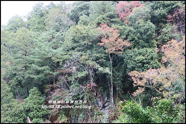 霞喀羅古道24.JPG