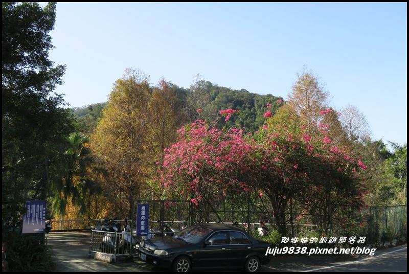 羅馬公路34.JPG