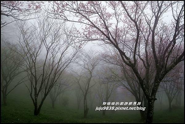 協雲宮12.JPG