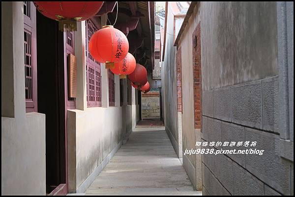 百年木棉10.JPG