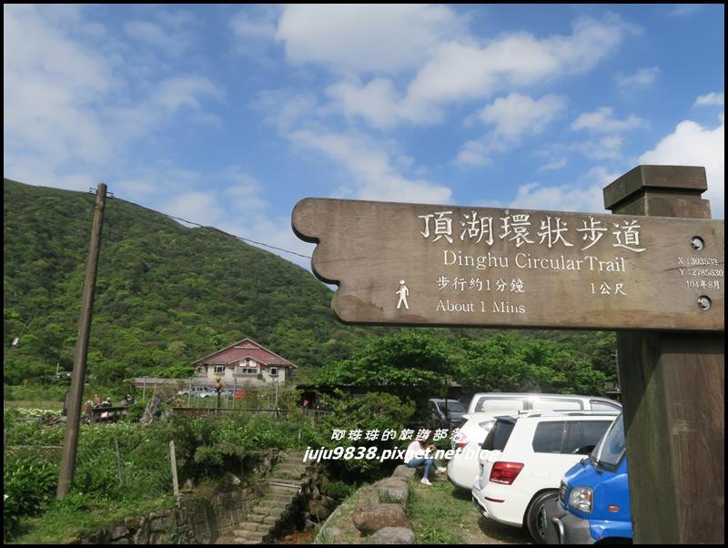 竹子湖7.JPG