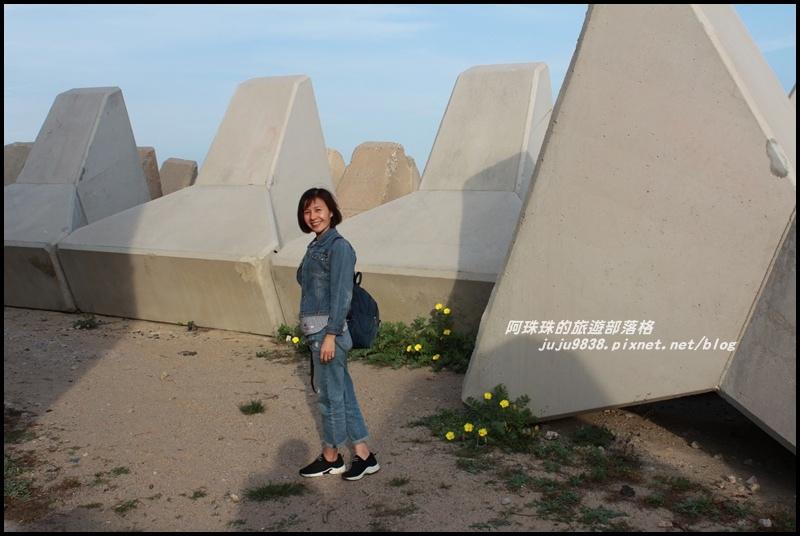 新湖漁港1.JPG
