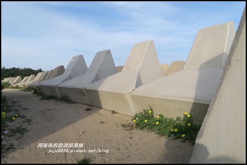 新湖漁港21.JPG