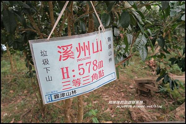 溪洲山34.JPG