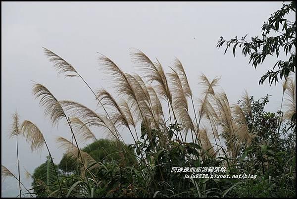 溪洲山37.JPG
