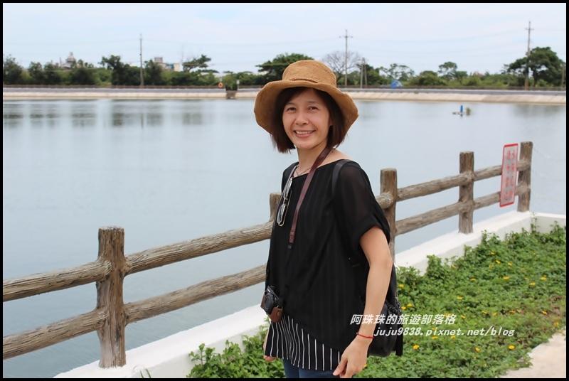 桃園地景藝術16.JPG