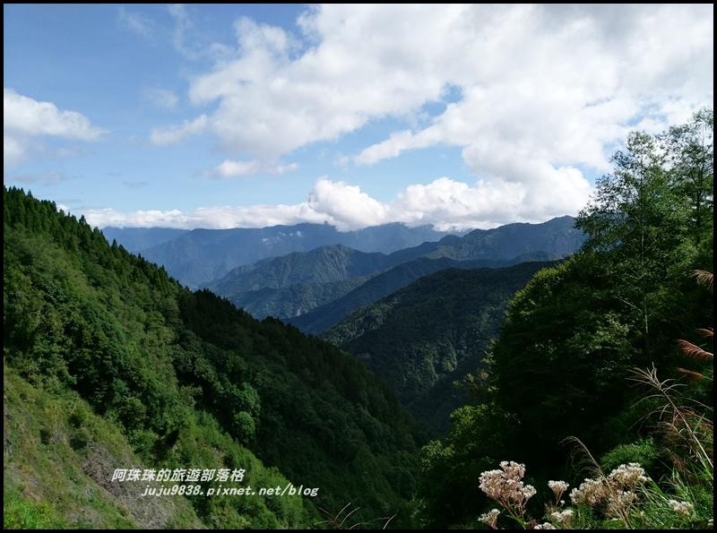特富野古道1.jpg