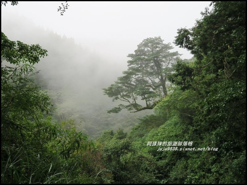 特富野古道33.JPG