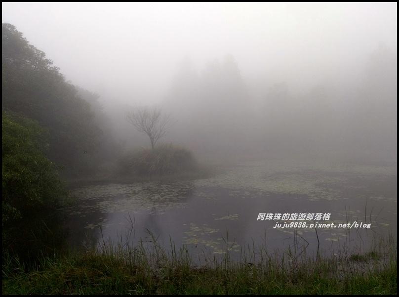 冷水坑絹絲瀑布7.jpg