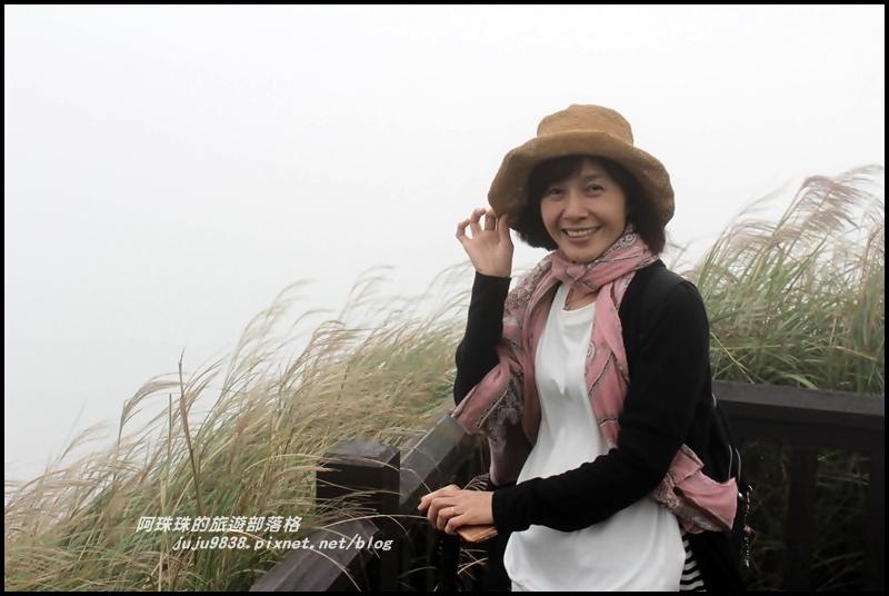 七星山東峰5.JPG
