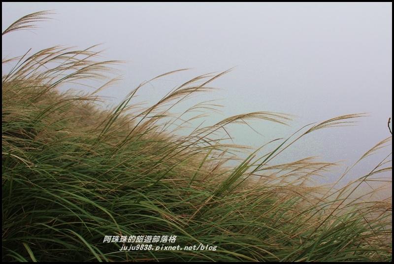 七星山東峰8.JPG