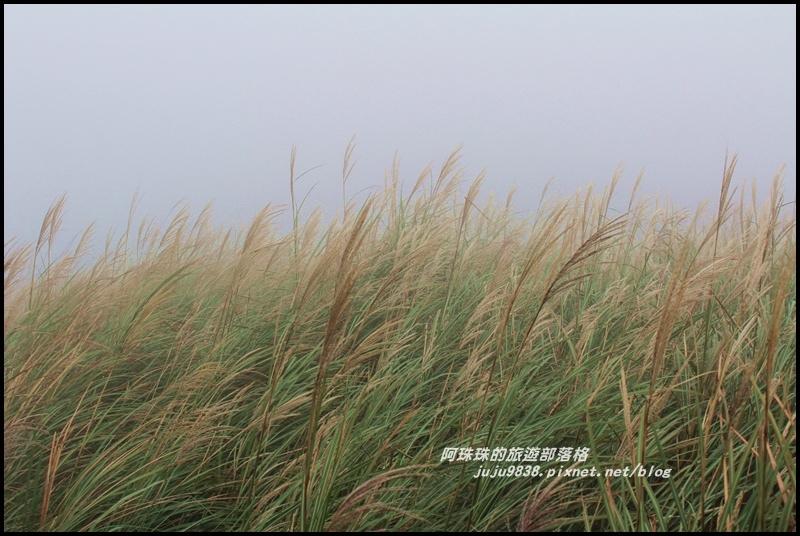 七星山東峰11.JPG