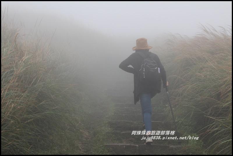 七星山東峰16.JPG