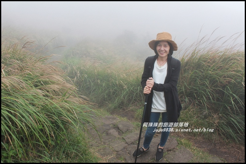 七星山東峰25.JPG