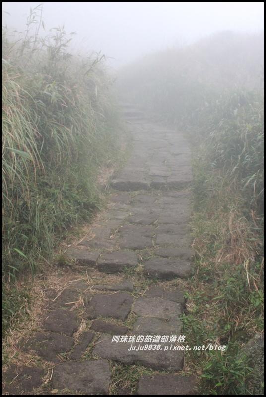 七星山東峰28.JPG