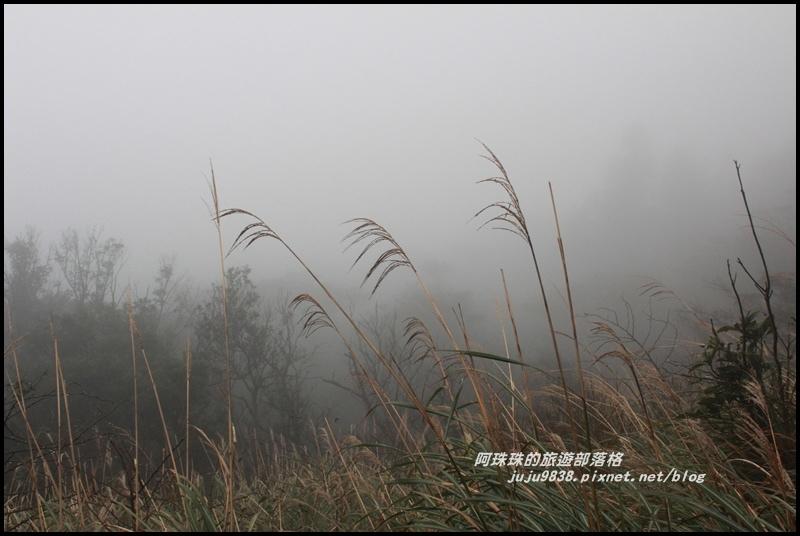 七星山東峰31.JPG