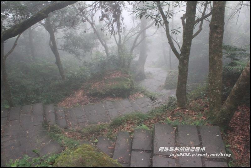 七星山東峰30.JPG