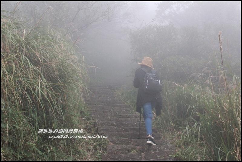 七星山東峰32.JPG