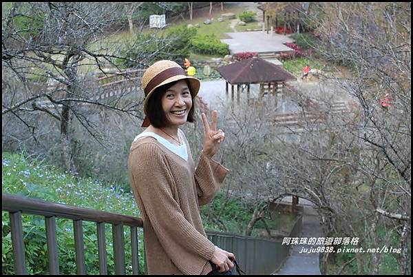 石門水庫楓紅23.JPG
