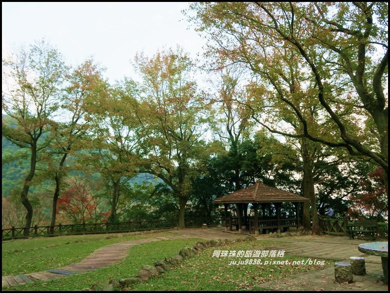 石門水庫楓紅53.JPG