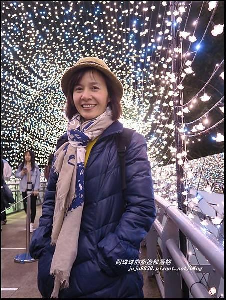 新北歡樂耶誕城8.JPG