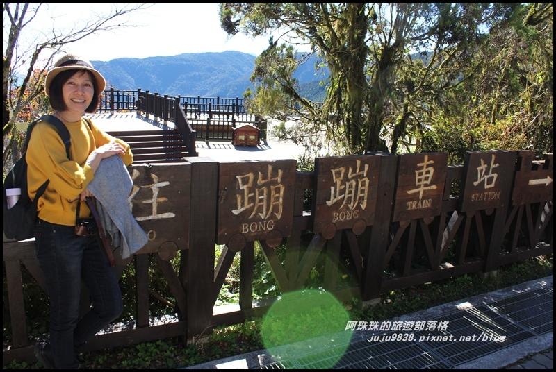 茂興懷舊古道4.JPG