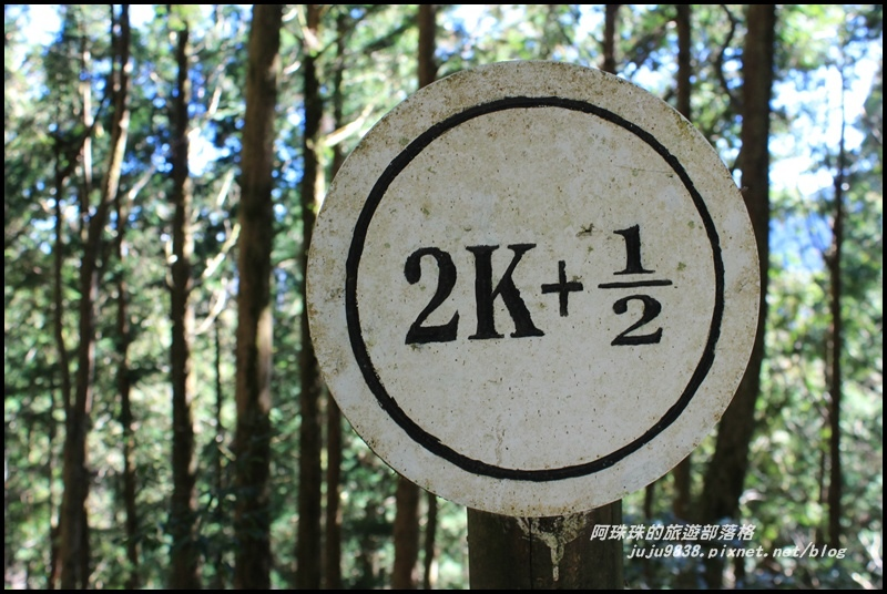 茂興懷舊古道15.JPG
